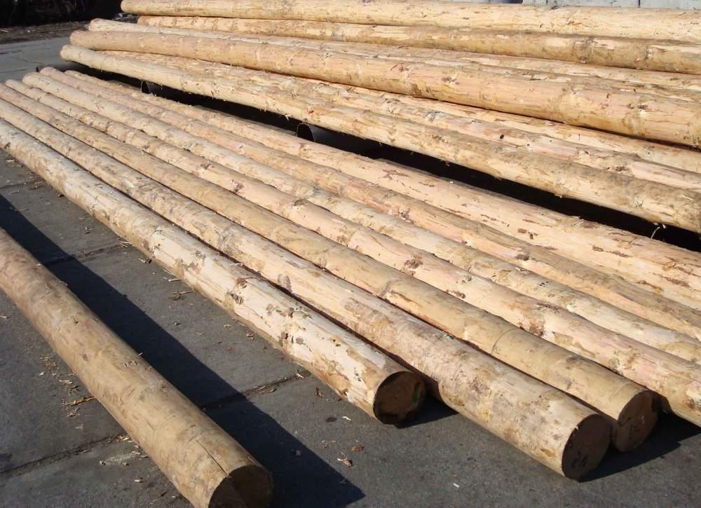 Деревянные столбы 1,2(h)